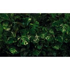 Tropical Wall P333-VD4